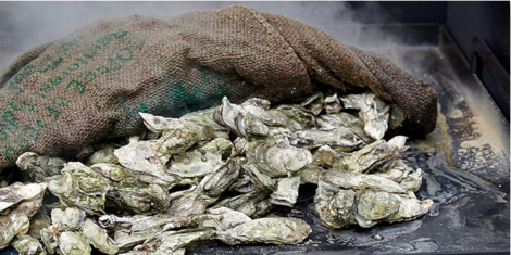There are still spaces available for the Oyster Roast!